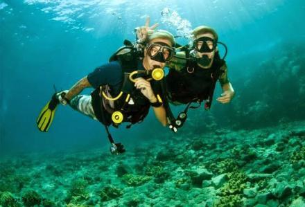 Wisata Diving