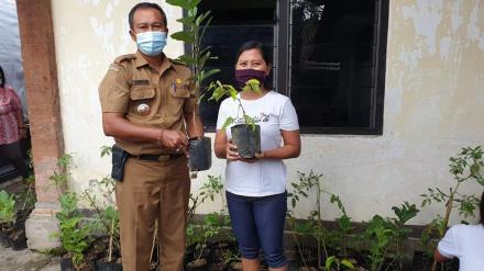 Penyerahan Bantuan Bibit Ke Seluruh Dasawisma Di Desa Umeanyar Dari Dinas Ketahanan Pangan